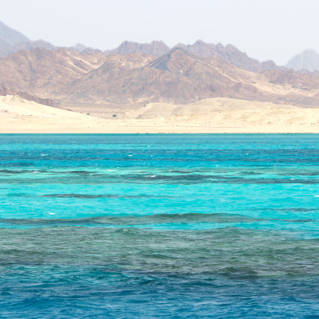 """""""Ras Mohammed in the Red Sea, Egypt"""" stock image"""