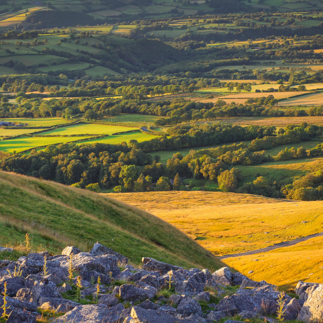 """Summer in the Black Mountains"" stock image"