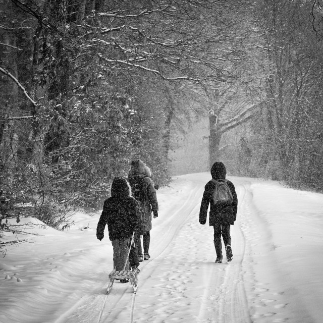 """Walk in the snow"" stock image"
