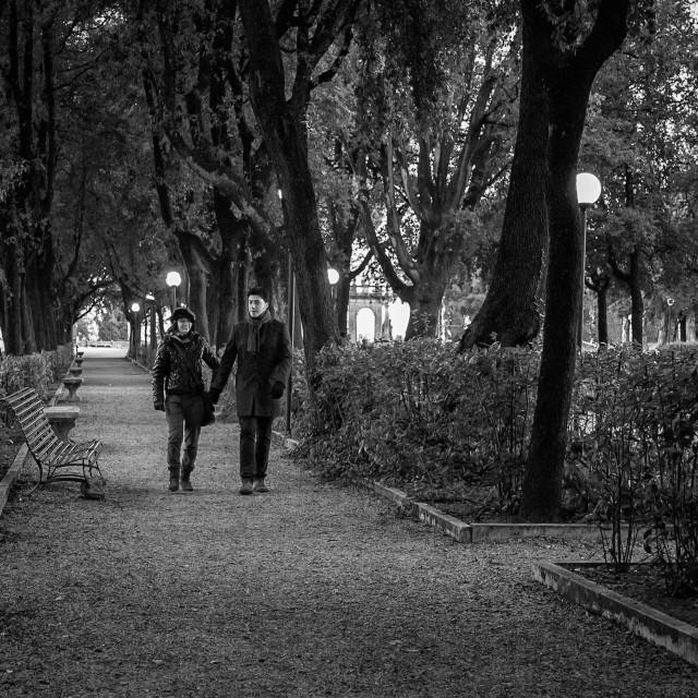 """Evening stroll in the park"" stock image"