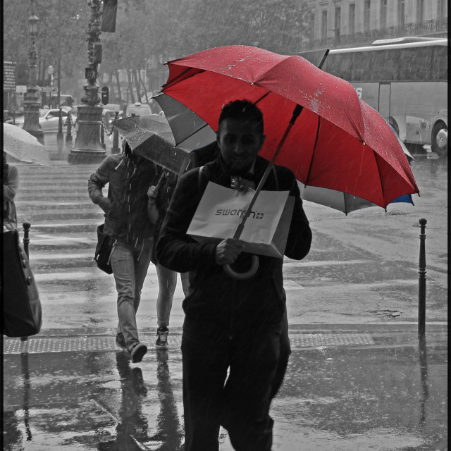 """""""RED BROLLY"""" stock image"""