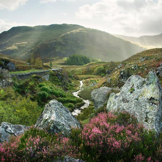"""""""Highland Scene"""" stock image"""