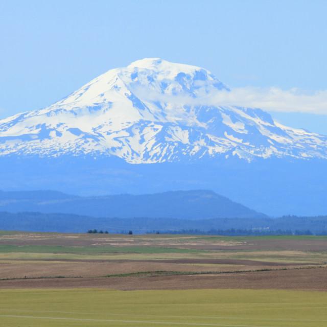 """Mount Adams, Washington, U.S.A."" stock image"