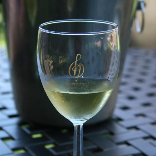 """Harmony Vineyards"" stock image"