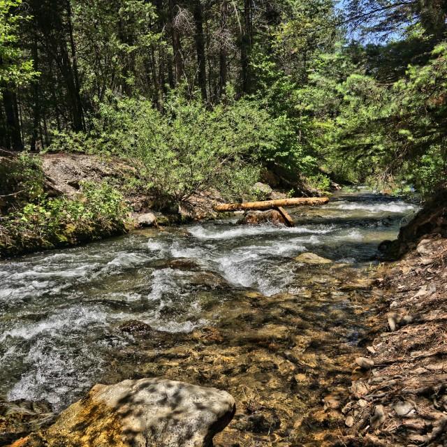 """Upper New Mexico Stream 3"" stock image"