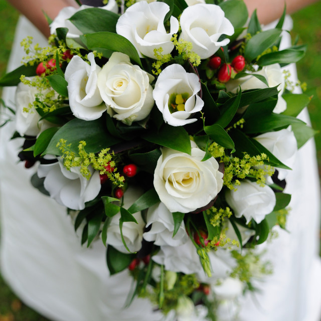 """Brides bouquet green and white"" stock image"