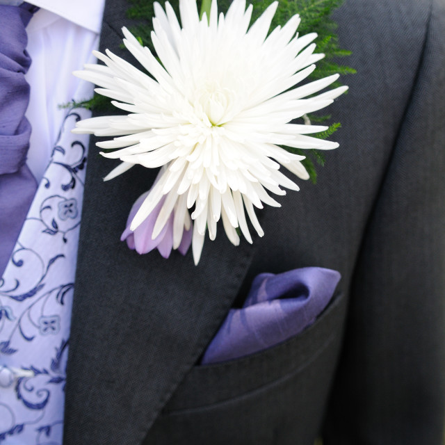 """Grooms buttonhole white"" stock image"