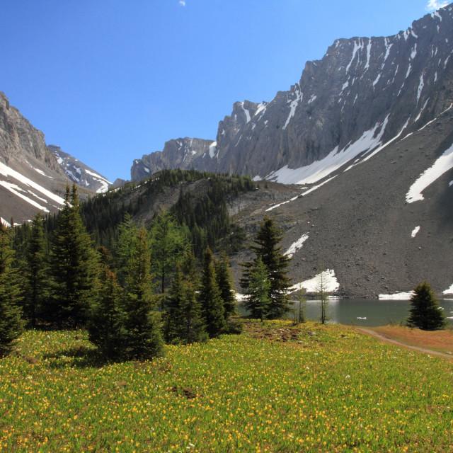 """Mountain Scenic"" stock image"