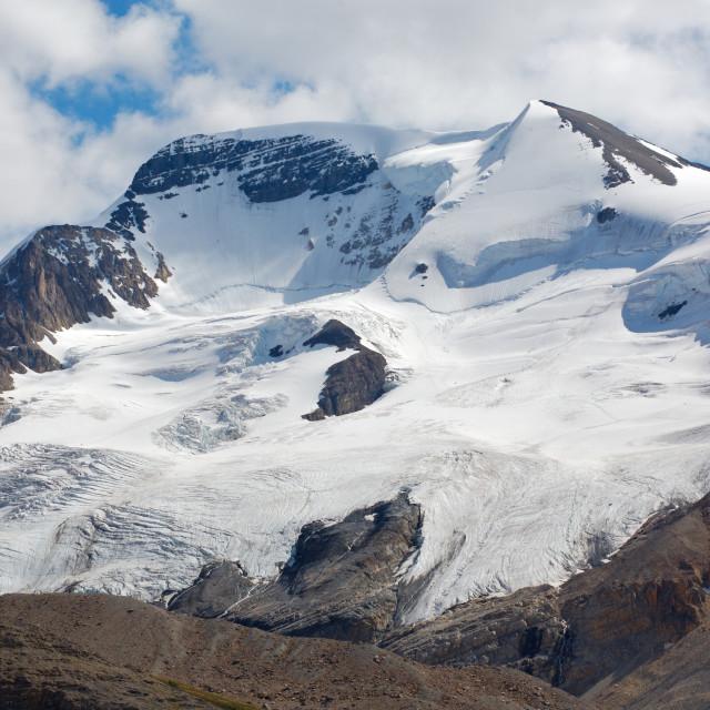 """Mount Athabasca in Jasper National Park"" stock image"