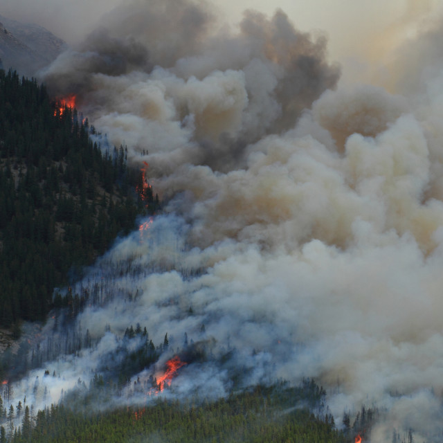 """Forest Fire in the Rocky Mountains 11"" stock image"