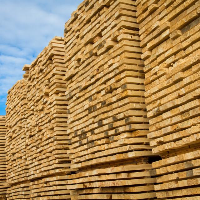 """""""Lumber"""" stock image"""