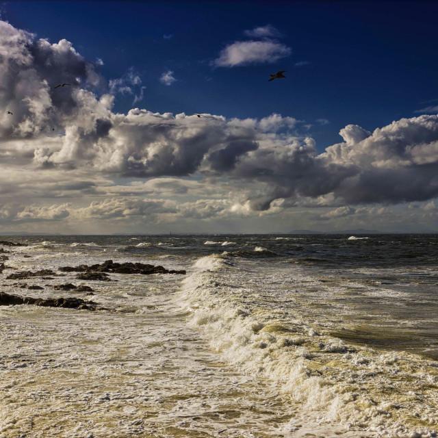 """""""Moray Coast"""" stock image"""