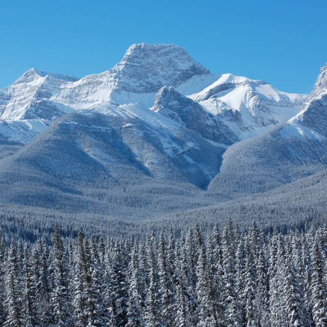 """Winter scene of Mount Lougheed 02"" stock image"