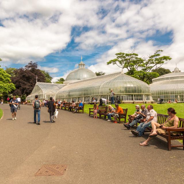 """Botanic Gardens, Glasgow"" stock image"