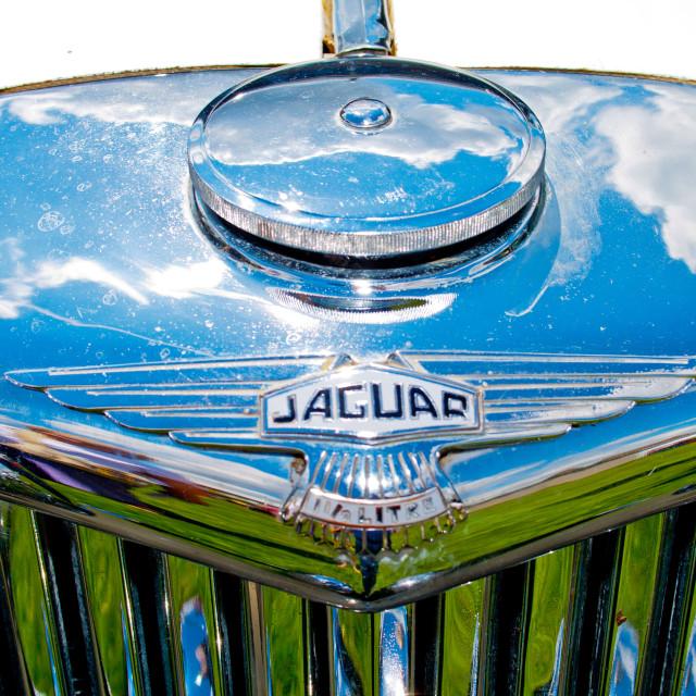 """""""Jaguar SS 1.5 Litre"""" stock image"""