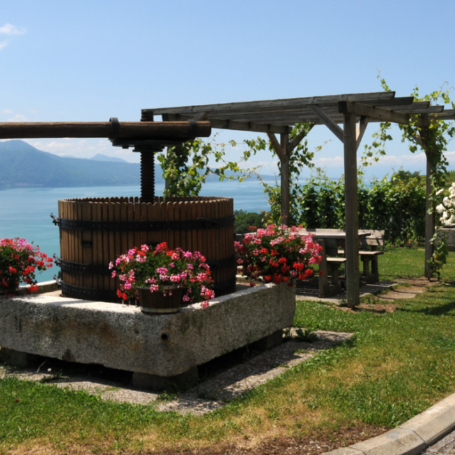 """Old wine press"" stock image"