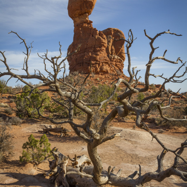"""Balanced Rock 2"" stock image"