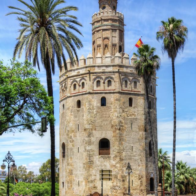 """""""Torre del Oro in Seville"""" stock image"""