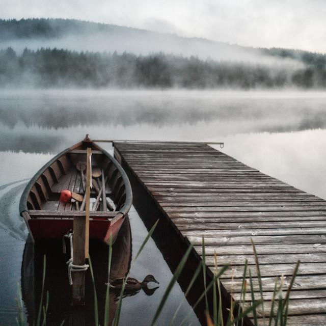 """""""Misty lake"""" stock image"""
