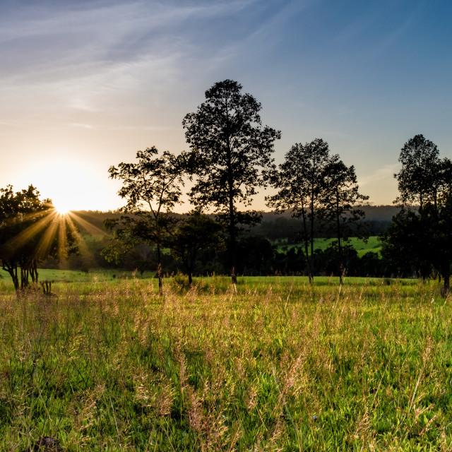 """""""Sunset in Tung Salang Luang Nationnal Park"""" stock image"""