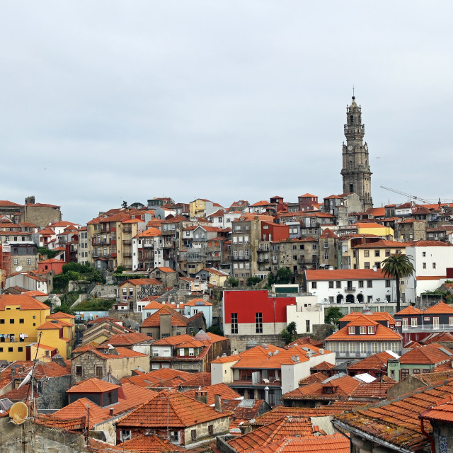 """Porto city view"" stock image"