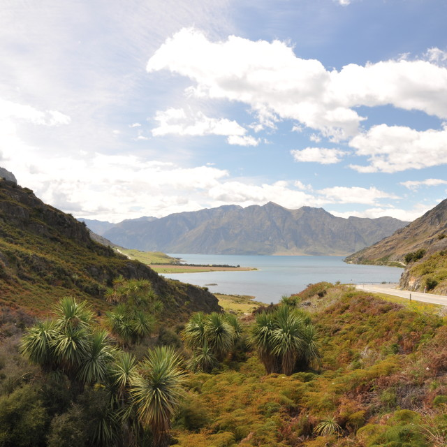 """""""Cardrona Valley Road"""" stock image"""