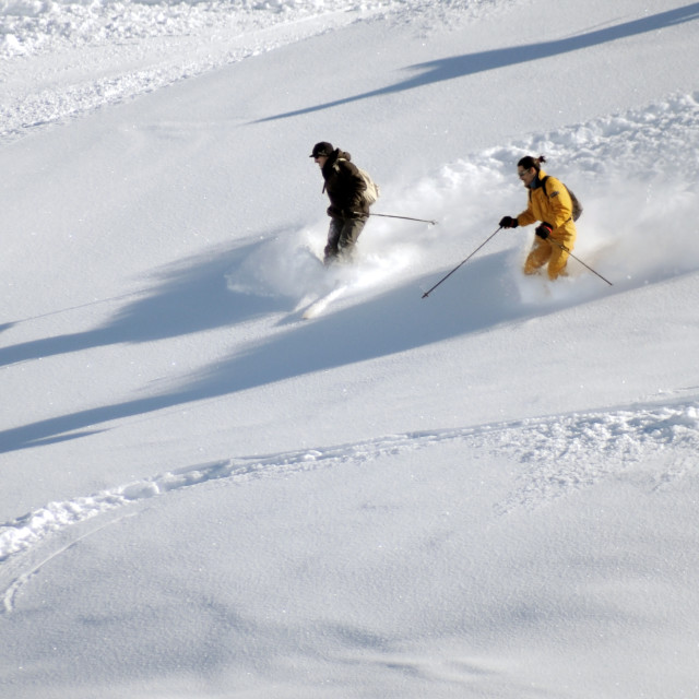 """Skiers"" stock image"