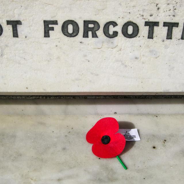 """""""Not forgotten"""" stock image"""