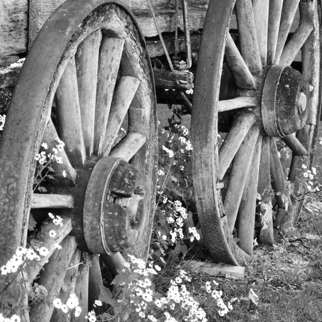 """Wagon Wheels"" stock image"