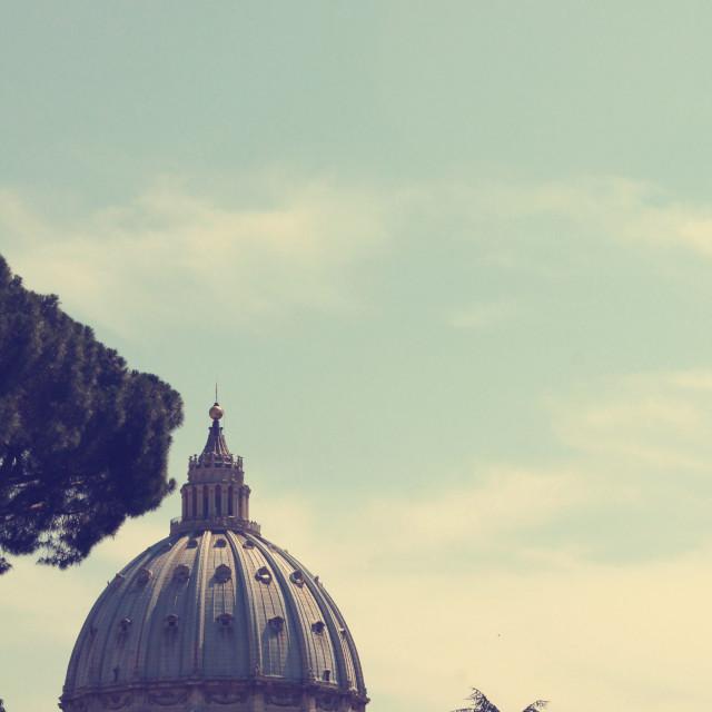 """""""Vatican Vista II"""" stock image"""