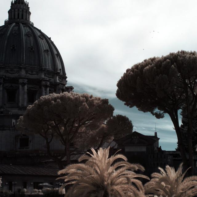 """""""Vatican Vista III"""" stock image"""
