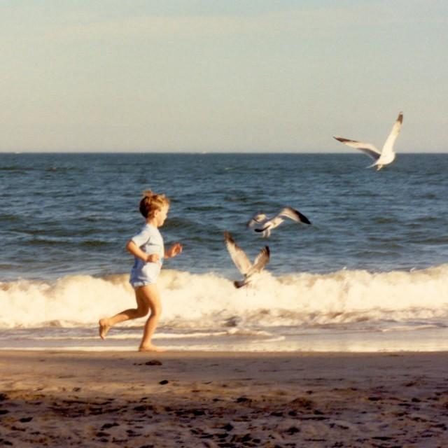 """Boy chasing gulls"" stock image"