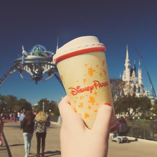 """At Disney"" stock image"
