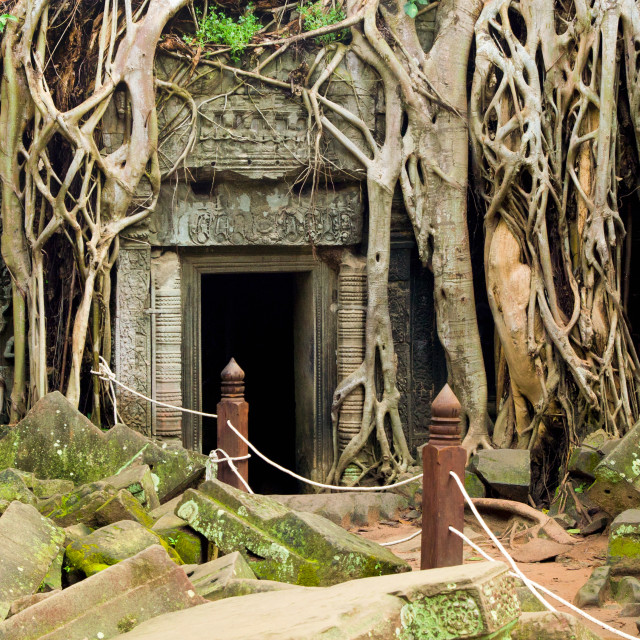 """Ta Prohm Temple in Cambodia"" stock image"