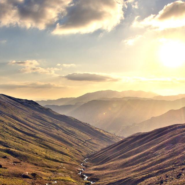"""""""Sunny hillside"""" stock image"""
