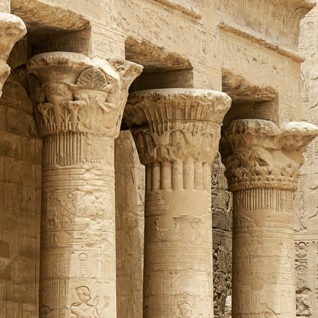"""Columns at Edfu Temple, Egypt"" stock image"