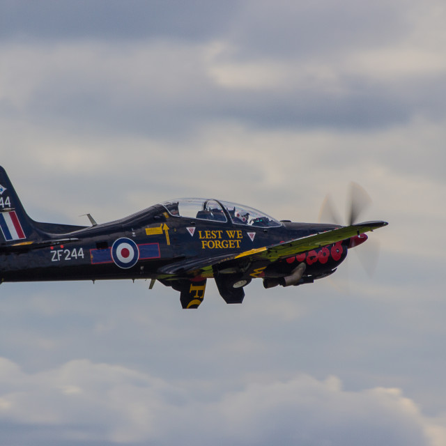 """Short Tucano"" stock image"
