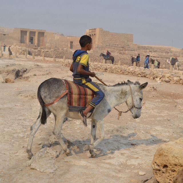 """""""Boy rides Donkey"""" stock image"""
