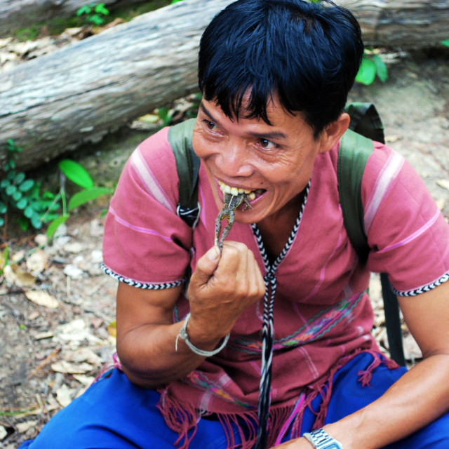"""""""Jungle Guide Eating a Frog"""" stock image"""