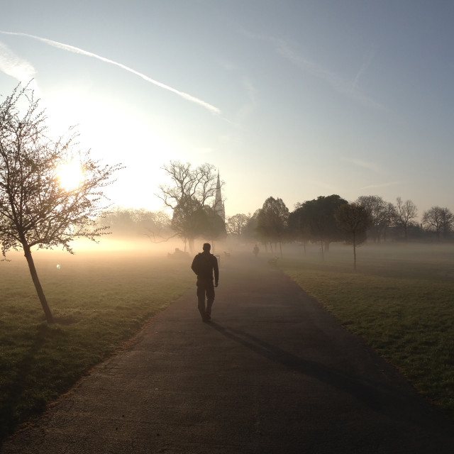 """Clissold Park in the mist"" stock image"