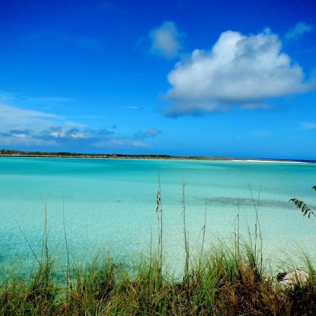 """""""Bahamas Castaway Cay"""" stock image"""