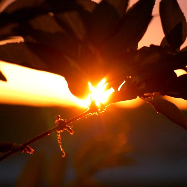 """Alabaster Sunset"" stock image"