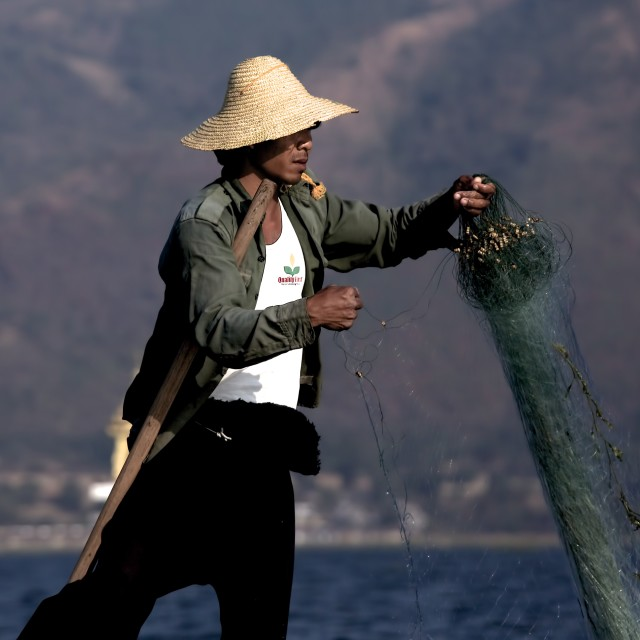 """Myanmar Fisherman"" stock image"
