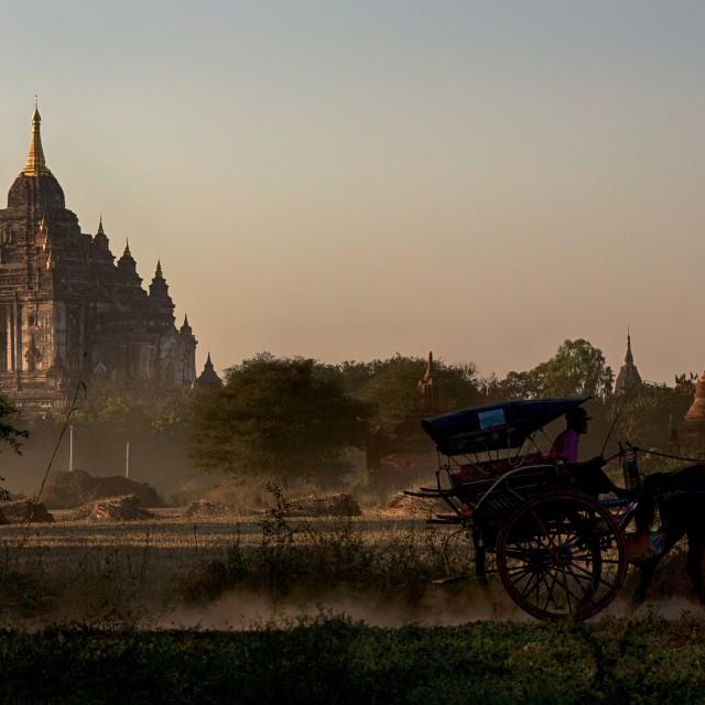 """Horse, Cart and Stupa."" stock image"