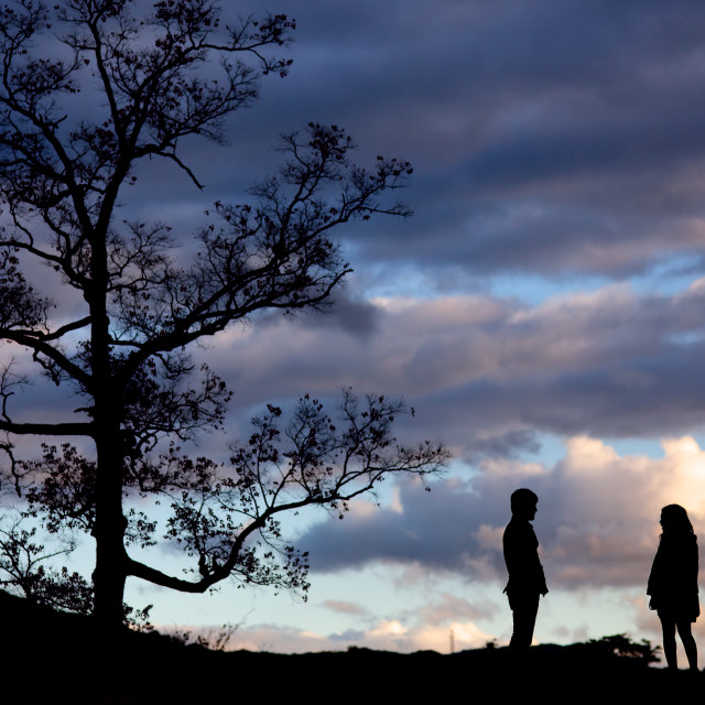 """""""Silhouetted Couple and Tree at sunset"""" stock image"""