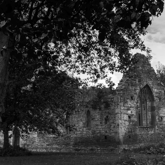 """The Ruined Chapel Greyscale"" stock image"