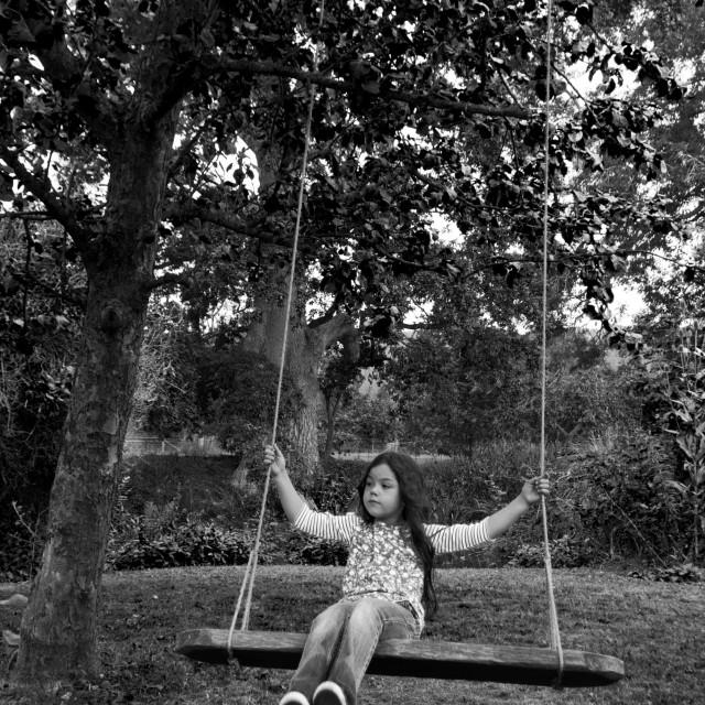 """Swing in the garden"" stock image"
