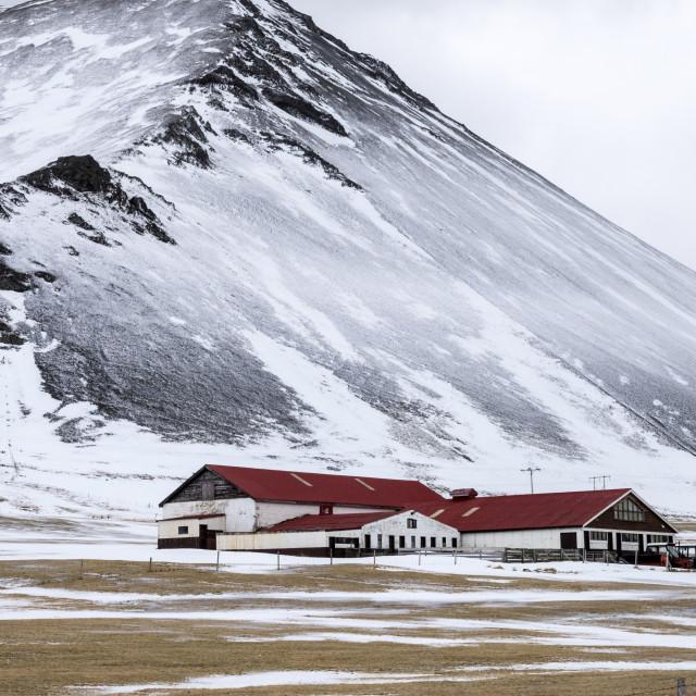 """Snaefellsnes farm in winter"" stock image"