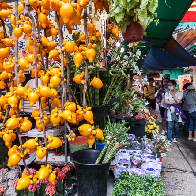 """""""Exotic fruit"""" stock image"""
