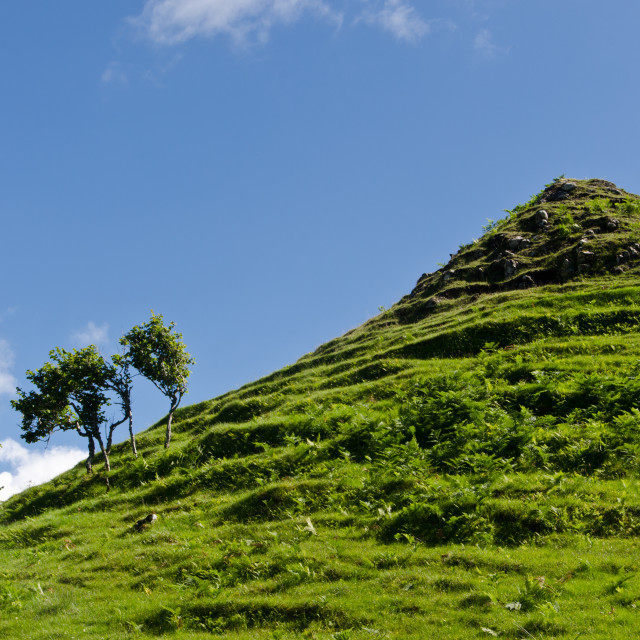 """Hillside near the Fairy Glen"" stock image"